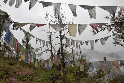 Buddhist prayer flags on the way to Taktsang Monastery. Paro Valley, Bhutan.