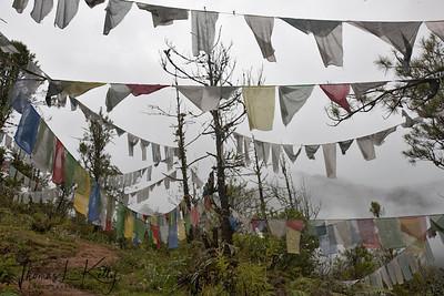 Buddhist prayer flags on the way to Taktsang Monastery. Paro Valley, Bhutan.