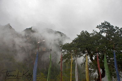 Prayer flags at Taksanga.  Paro Valley, Bhutan.