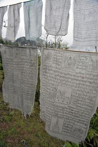 Buddhist prayer flags at Taktsang Monastery. Paro Valley, Bhutan.