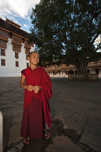 Young novice monk at the inner courtyard of Punakha Dzong. This dzong was constructed by Tuebi Zaow Balip under the great command of Zhabdrung Ngawang Namgyal in 1637. It is also the country's most beautiful Dzong.It is the winter residence of Bhutan's Central Monastic Body led by HH the Je Khenpo. The Dzong houses the most sacred relics of the Southern Drukpa Kagyu school including the Rangjung Kasarpani, and the sacred remains of Zhabdrung Ngawang Namgyal and Terton Padma Lingpa. Bhutan.