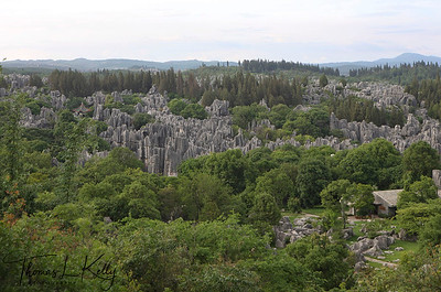 Over view of Shilin (Stone Forest). The tall rocks seem to emanate from the ground in the manner of stalagmites, with many looking like trees made of stone, creating the illusion of a forest made of stone. The magnificent, strange and steep landscape creates countless labyrinthine vistas, including: Major Stone Forest, Minor Stone Forest and Naigu Stone Forest, all of which feature stones in various formations. Animals, plants, and even human figures can be found here. Some are elegant, some are rugged, and each is lifelike with its own distinguishing characteristics. Yunnan Province, South West China.