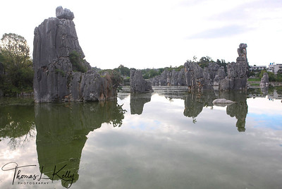 Shilin (Stone Forest) is a notable set of karst formations in Shilin Yi Autonomous County, in the Yunnan province of southwest China, approximately 85 km from the city of Kunming. The tall rocks seem to emanate from the ground in the manner of stalagmites, with many looking like trees made of stone, creating the illusion of a forest made of stone. The magnificent, strange and steep landscape creates countless labyrinthine vistas, including: Major Stone Forest, Minor Stone Forest and Naigu Stone Forest, all of which feature stones in various formations. Animals, plants, and even human figures can be found here. Some are elegant, some are rugged, and each is lifelike with its own distinguishing characteristics. Yunnan Province, South West China.