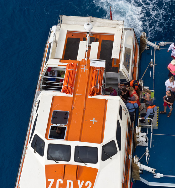 Cruise Ship Tender/Lifeboat