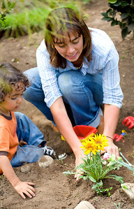 mother and son planting a tree in their garden