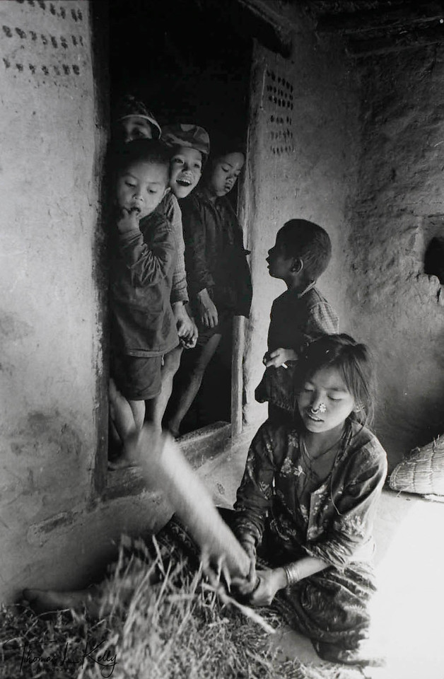 THRESHING <br /> Tamang girl threshes wheat on her front porch as brothers look on. Girl children from Sindhupalchowk district are considered high risk for trafficking. <br /> Sindhupalchowk, Nepal.