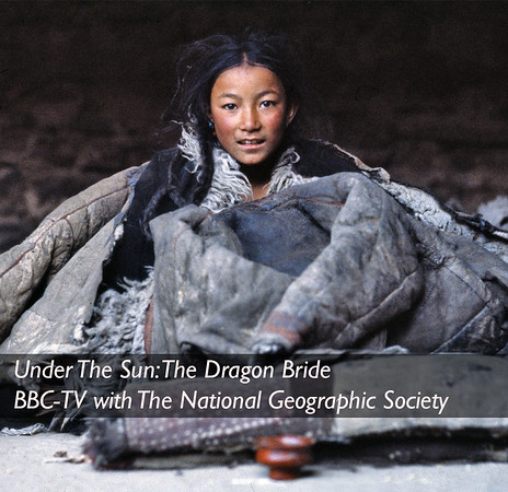Under The Sun: The Dragon Bride