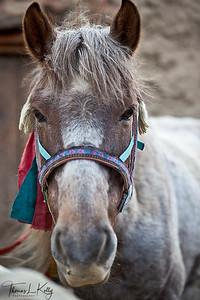 Mustang, Nepal.