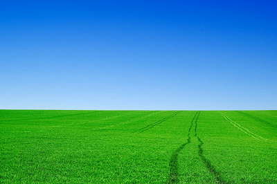 The green fields and blue sky.