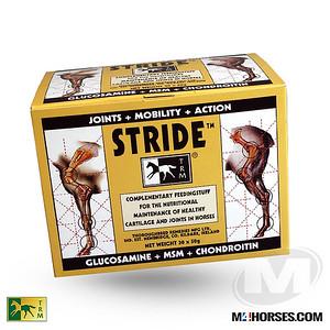 TRM-Stride-Jan-03-masked