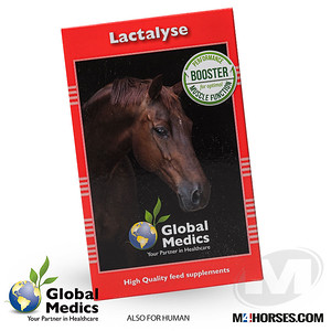 M4PRODUCTS-GM-Lactalyse