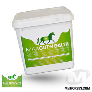 M4PRODUCTS-MaxGut-Health-1