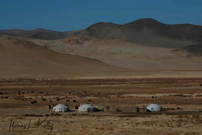 """Gers (tent house) dot dessicated land in Bayan-Olgii, which is a """"Kazakh province'. Western Mongolia."""