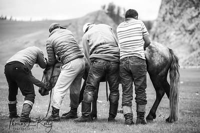 Mongol Horsemen.