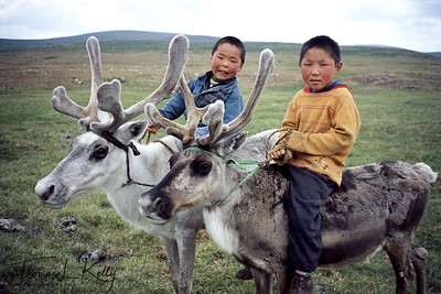 Tsaatan boys riding reindeer. West Taiga, Mongolia.