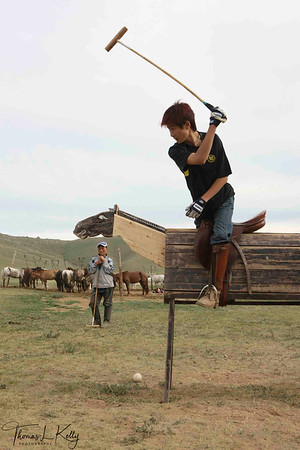 POLO in Mongolia