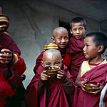 Young monks.