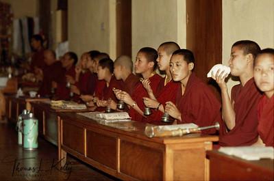 Renunciation is generally considered a path for men, not women.  Tibetan Nuns gather to recite prayers.