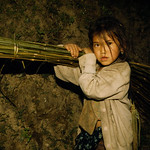 A young Tamang girl carrying nigalo (bamboo) that her father has cut down to make doko (baskets). Young girls are bound to contribute labour to their family instead of going to school for fo ...