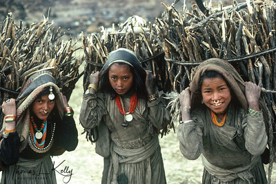 Chhetri girls houling bundle of wood from the nearby jungle, to sell them to richer community and landlords. A bundle of wood can fetch them NRS 200, which is equivalent to US$ 3. Simikot, Humla, Nepal.