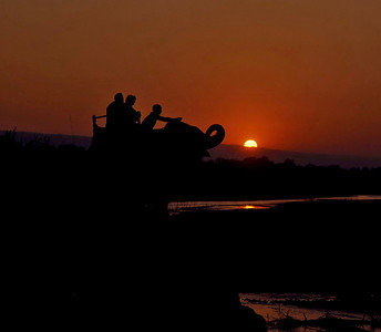 Elephant ride in sunset at  Chitwan National Park, Chitwan, Nepal.