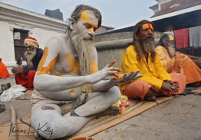 The vertical design of this sadhu's tilaka shows him to be a Vaishnava, or follower of Vishnu, whose gentleness is reflected in his devotees and their clothing of white or yellow, the colors of purity and surrender. Pashupatinath temple, Kathmandu, Nepal.