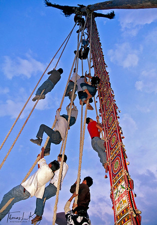 Newar devotees construct a four wheeled chariot, or rath, for pulling  Rato Machendranath. Patan, Nepal.