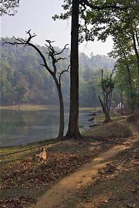 Betkot lake, Kanchanpur, Nepal.