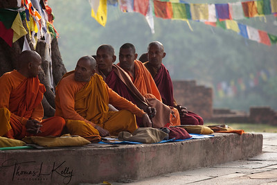 Sri Lankan sit under Bodhi tree in front of the Mayadevi Temple. Lumbini, Nepal.