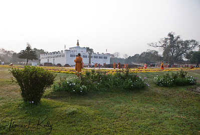 Thai monks circumamabulate Mayadevi temple. Lumbini, Nepal.