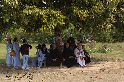 Pilgrims resting paati (shelter) under tree in sacred garden inside Lumbini complex. Nepal.