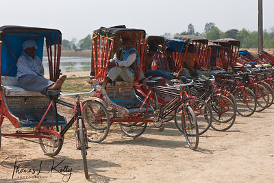 Rickshaw is best mode of transport to explore different monasteries in Lumbini. Nepal.