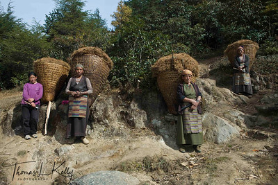 Sherpa women rest as they make their way home collecting dried pine leaves from nearby forest. Solu Khumbu, Nepal.
