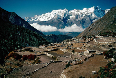 Pangboche at 13,058 ft/ 3,980 m is on the trekkers' trail as it is the home of the famous, rather infamous, skull of the yeti or the Abominable Snowman. Solukhumbu, Nepal.