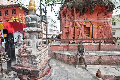 Peepal tree shrine