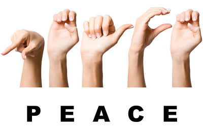nice human hand make peace sign language