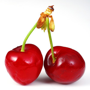 Cherries isolated on whitebackground