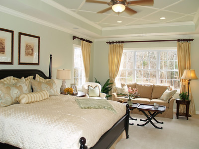 Luxury master bedroom suite in an upscale american home showing the king sized bed, sitting area and tray ceiling.