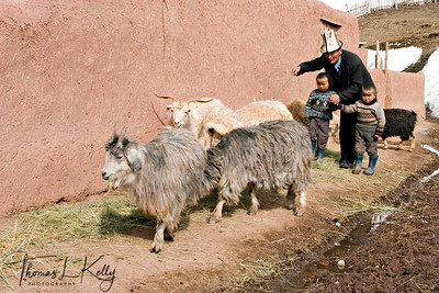 Kyrgyz children enjoy helping their parent in his household work.  Kyrgyz Republic.