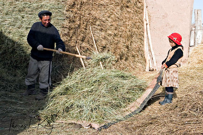 Kyrgyz children enjoy helping their parent in his household work. Kyrgyz Republic.