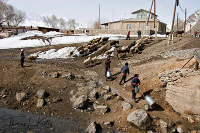 Kyrgyz children enjoy helping their parents in their household work. Children hauling water for household work from river nearby. Kyrgyz Republic.