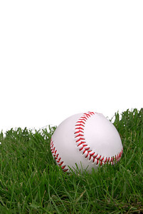 new,clean baseball in grass with a white background