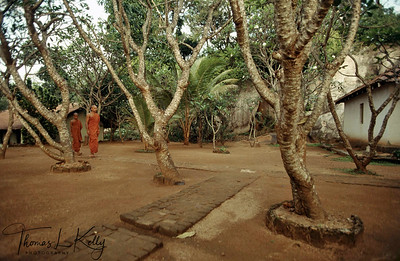 Therevadan Buddhist monks walking through their monastic surroundings. Ulpotha, Sri Lanka