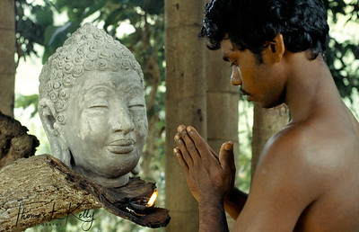 Buddha head serenity. Ulpotha, Sri Lanka.
