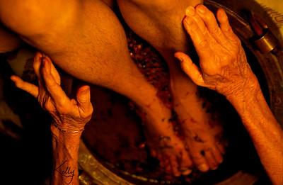 With feet soaking in soothing spikanard herbal bath, legs are massaged. Ulpothaa, Sri Lanka