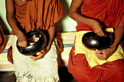 Coco de mer shell provides the Thervadan monks with their eating bowl. Ulpotha, Sri Lanka.