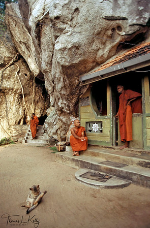 Monastery courtyard with monks and their loyal cat. Ulpotha, Sri Lanka.