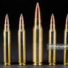 Rifle ammunition, .223 Remington (5,56 × 45mm) and .308 Winchester (7,62 × 51 mm), full metal jacket