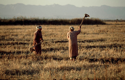 Farmers hacking away the ground at their field for agriculture purpose. Kurgentubee, Tazikistan