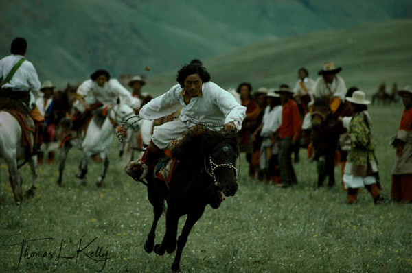 At the Paiyul summer festival in eastern tibet, Khampa horseman charge down the field at full galop. Lhasa valley was full of refugees from Eastern Tibet, mostly Khampas Tibet